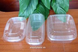 Hộp nhựa sử dụng 1 lần